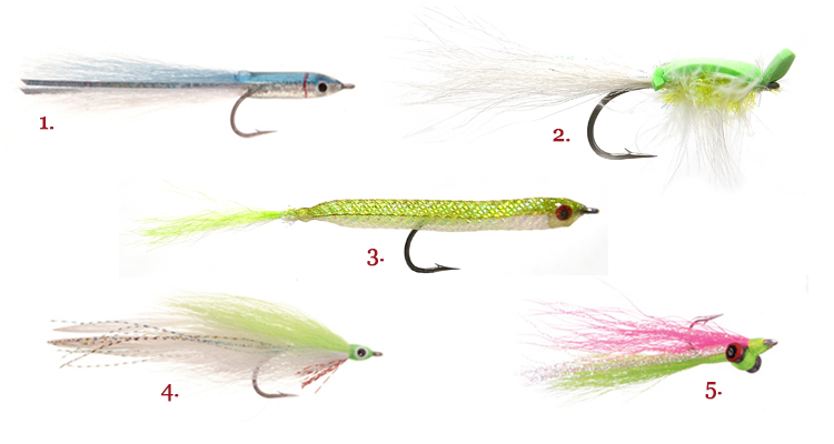 Rhody fly rodders america 39 s oldest saltwater fly fishing for Saltwater fishing gear for beginners